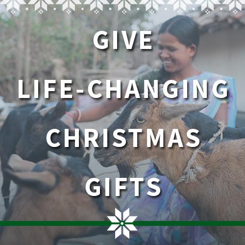 Give Life-Changing Christmas Gifts