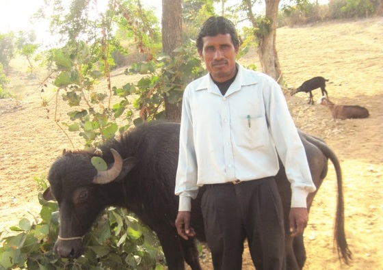 This is Ravan with the water buffalo he received through the generosity of GFA friends like you. Thank you!