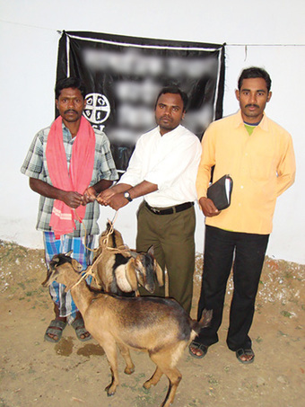 Above: At a Christmas gift distribution, Pastor Patoj (right) arranged for Ujendra to receive a pair of goats. Now those goats have multiplied to 14! (see photo below)