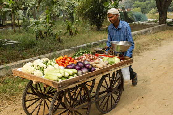 A simple pull cart enables a farmer or vendor to drastically increase their profits, helping them meet their families' daily needs.