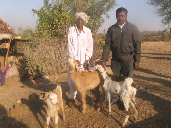 Jagat (pictured) received three goats through a Christmas gift distribution, and now his family has a steady source of nutrition.