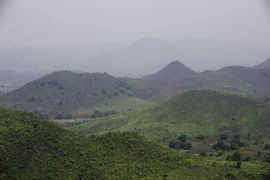"The Berhampur Orissa Region is known as the ""Green Garden of Orissa."""
