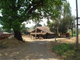 While many tourists see Central Gujarat's historical sites, they rarely see the more rural villages, like this one.