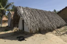 Constructed of thatches, wood and mud, this is a typical village home in the Central Karnataka Region.