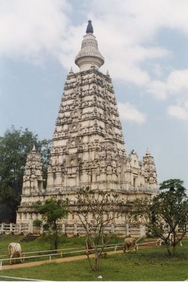 Many temples and shrines dot the landscape of the Central Sri Lanka Region.