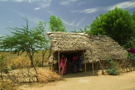 This very simple structure serves double duty as a home and a roadside store run by the family in the Central Tamil Nadu Region.