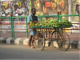 A fruit vendor in the Central Tamil Nadu Region pushes his banana cart down a city street.