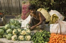 The vegetables grown in this region are known throughout India.