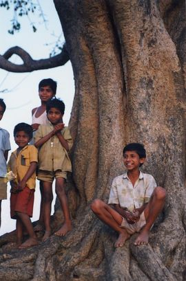 Jharkhand boys cool off in the shade of a large tree.