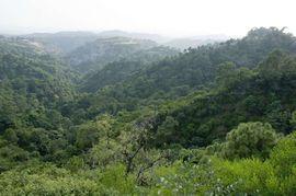 The Himalayan mountain range fills Jammu & Kashmir with breathtaking views of scenic natural beauty.