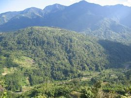 These mountains and jungles are home to many species of animals, including the one-horned rhino.