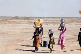Drought sometimes forces people to travel miles to get enough water for their household.