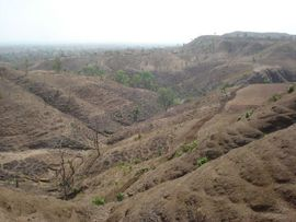 Stony hills make up the landscape of the Panchmahal Region in Gujarat.