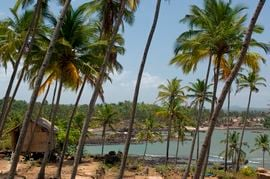 The coastal region of South Goa exhibits much beauty that draws in more than one million tourists each year.