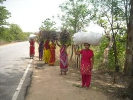 These women along the roadside in the Southeast Ranchi Jharkhand Region have been collecting firewood to use when cooking.
