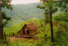 This traditional home is built from materials available in the dense forest in this lush hillside area.