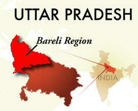 The Bareli Uttar Pradesh Region