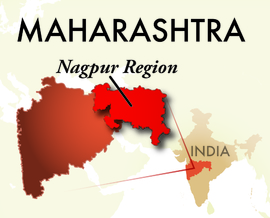 The Nagpur Maharashtra Region
