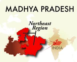 The Northeast Madhya Pradesh Region