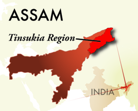 The Tinsukia Assam Region