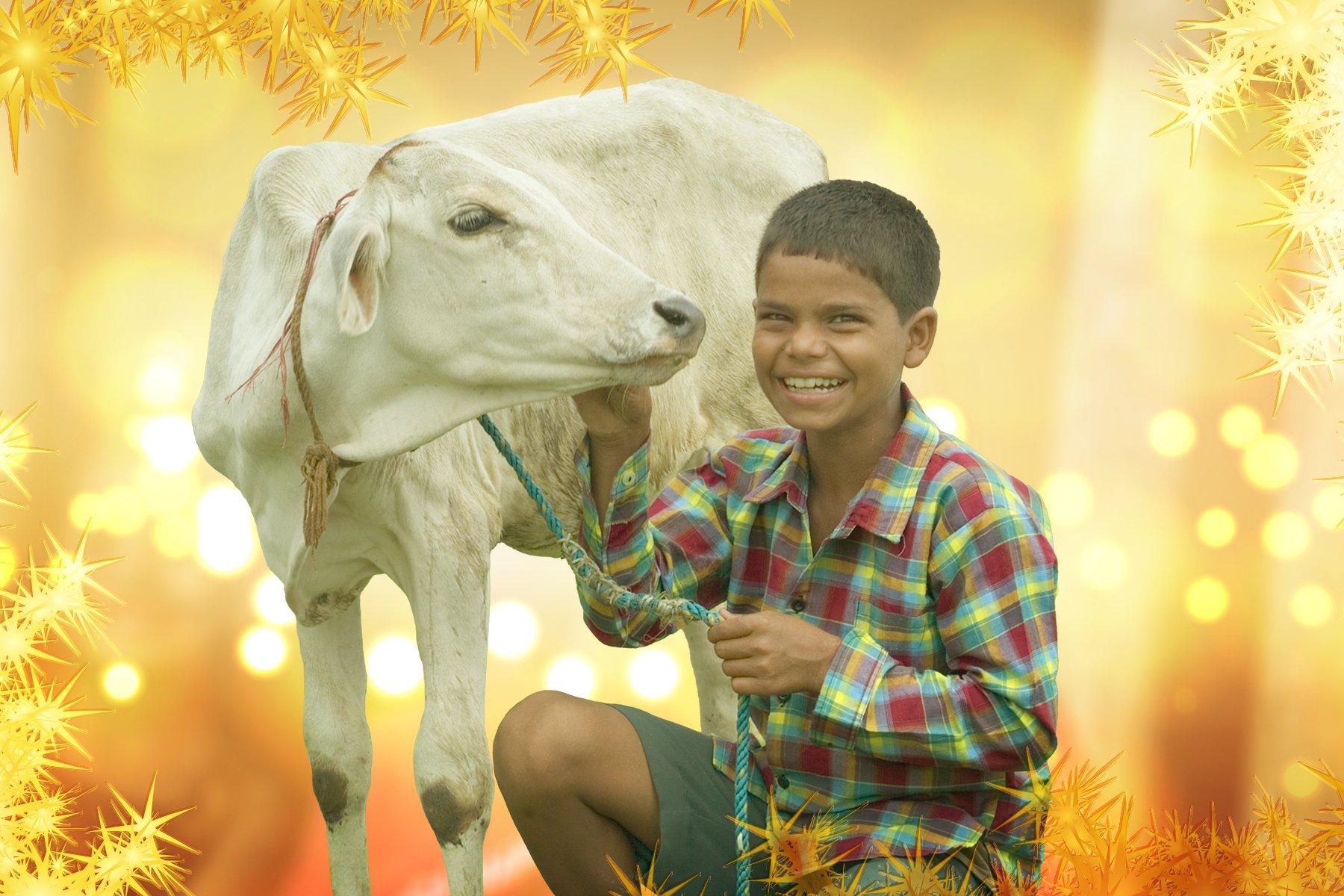 06-04-boy-with-cow.jpg
