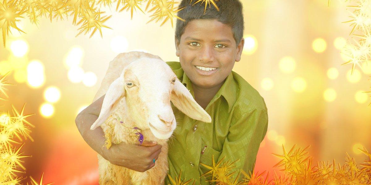 25-23-boy-with-lamb-meta.jpg