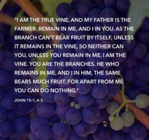 discipleship-blog-verse