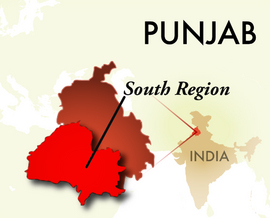 The South Punjab Region