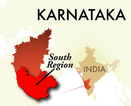 The South Karnataka Region